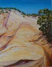 481 - Rainbow Beach Dune 3