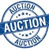 2017 Auction Extravaganza - This Saturday!!