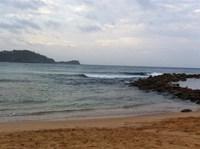 Avoca Beach 3