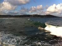 Avoca Beach 7