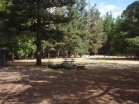 Bungleboori Camping Area