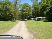 Currawong Camping Area