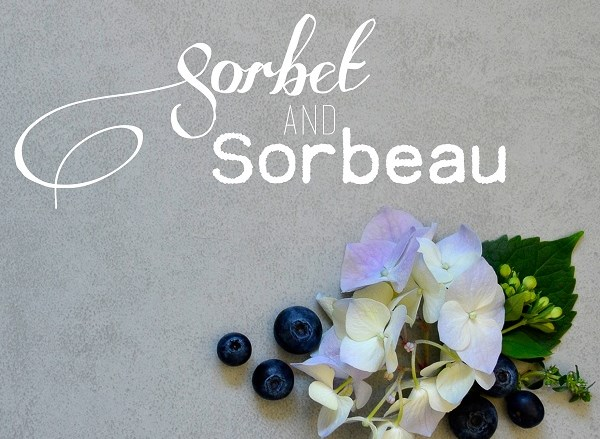 Sorbet and Sorbeau