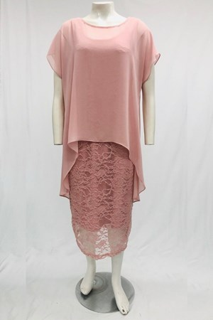 BLUSH - Avalon Stretch lace Dress With Chiffon Overlay