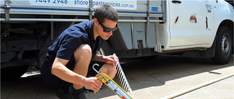 Shore Pest Services Home